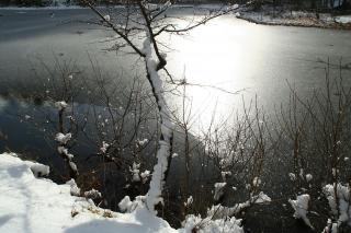灰色の風景3 長野市戸隠みどりが池