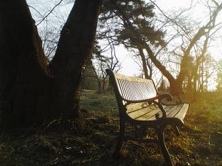 朝のベンチ  2007/2/22 長野市雲上殿