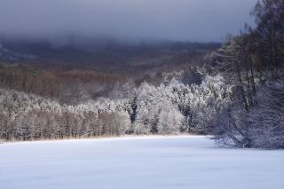 飯綱大池冬景色