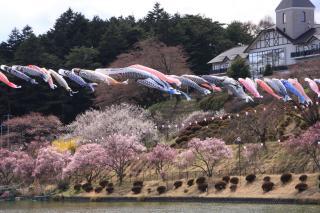 辰野町 荒神山公園