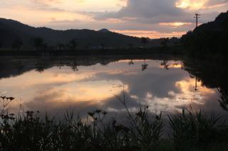 朝の軍足池